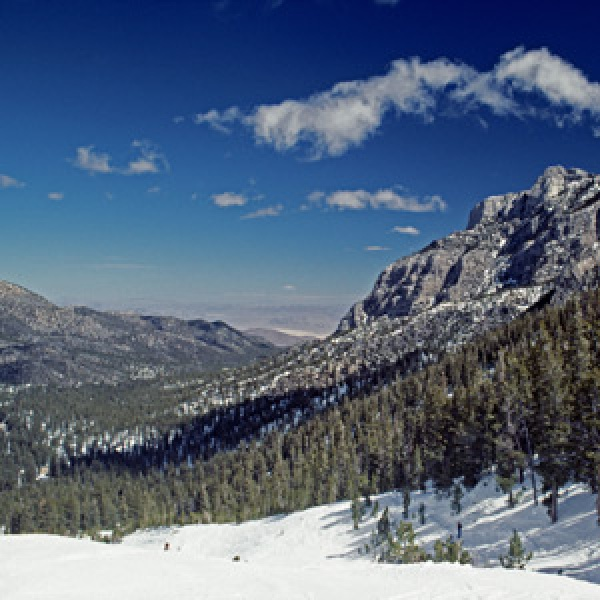 Mount Charleston's Alpine Retreat