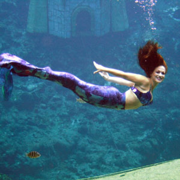 Weeki Wachee Springs Celebrates Mermaids