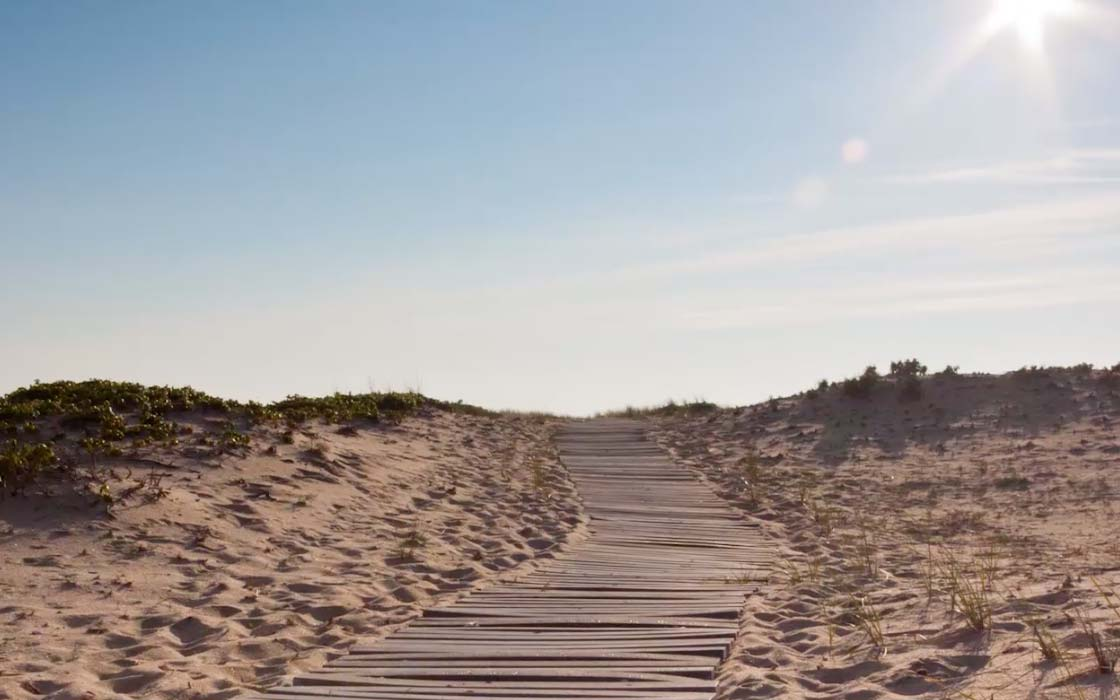 Five Things To Do On Martha S Vineyard Travel Leisure